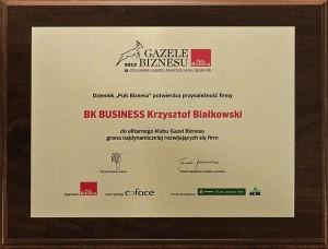 dyplom_gazele_biznesu